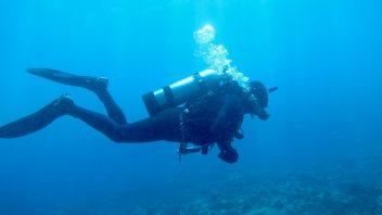 PADI Scuba Diving Course