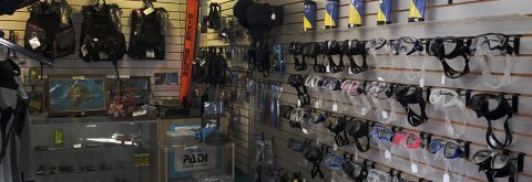 Hilo's Best Dive Shop